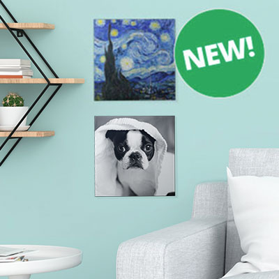 Two wall tiles on light blue wall, one with Starry Night painting featured and one with a photo of a dog.
