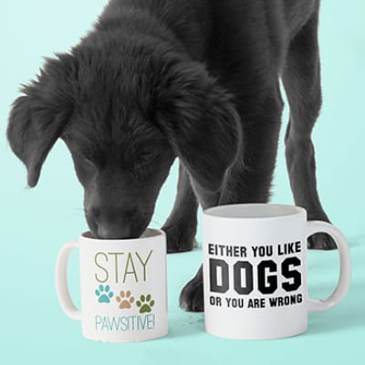 A cute dog drinking out of a mug with a custom design on the side showing paw prints and text which reads: Stay Pawsitive.