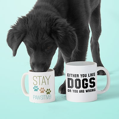 A cute dog drinking out of a mug