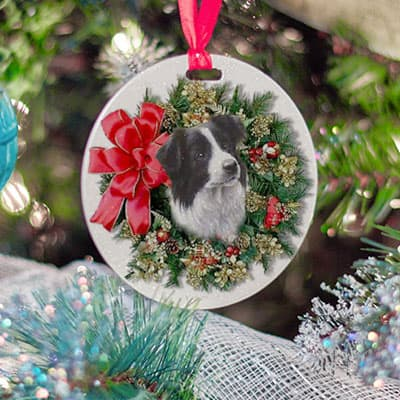 A cute ornament of someones dog for Christmas