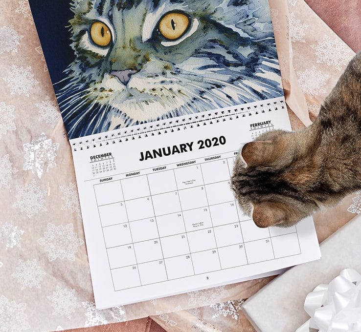 Calendar of with a cat design being looked at by an actual cat
