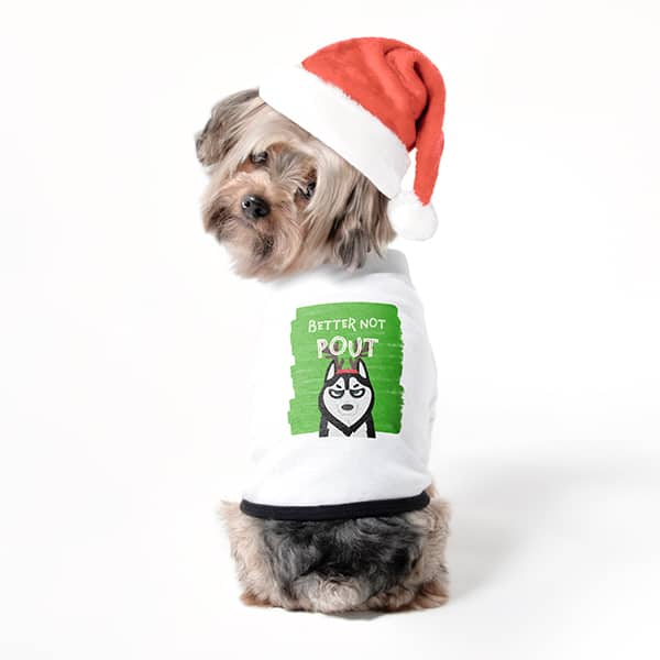 Dog t-shirt with a custom printed design that reads Better Not Pout