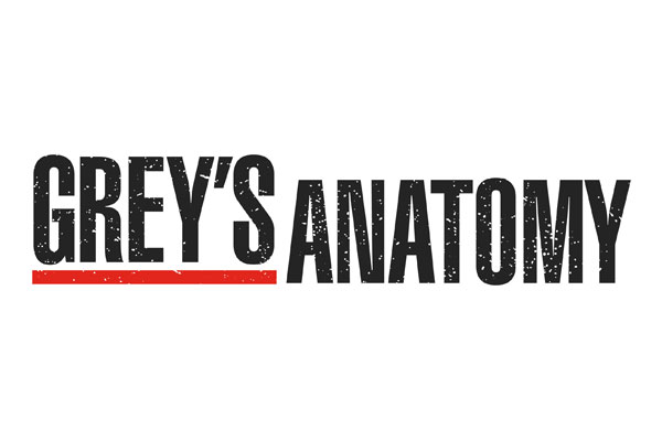 Grey's Anatomy TV Show Oval Stickers