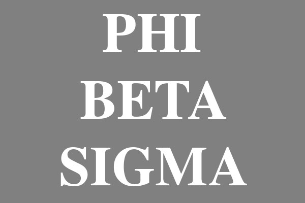 Phi Beta Sigma Fraternity Junior Spaghetti Tanks