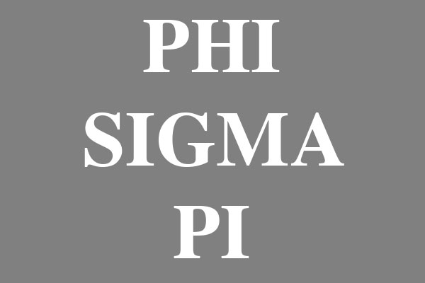 Phi Sigma Pi Fraternity Round Car Magnets
