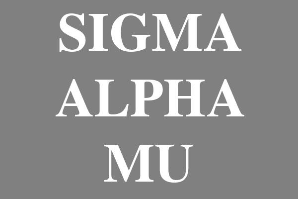 Sigma Alpha Mu Fraternity Womens Hooded T-Shirts