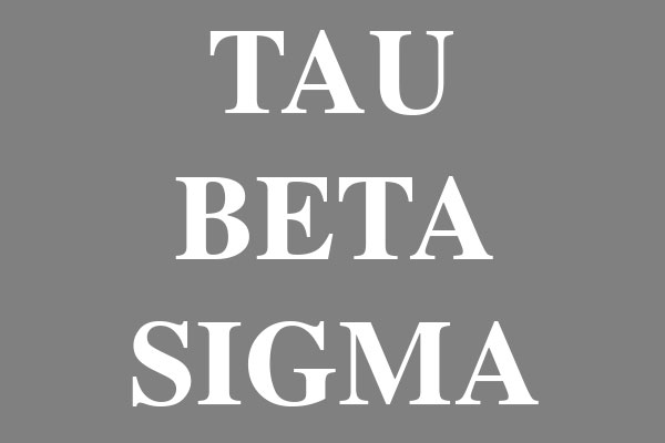 Tau Beta Sigma Sorority Rectangle Stickers